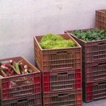 Les circuits alternatifs pourraient bénéficier des scandales agroalimentaires
