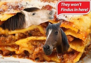 findus-cheval