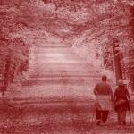 Accueil défavorable pour la réforme des retraites