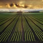 Les professionnels de l'agriculture comptent déjouer la suspicion des consommateurs