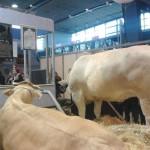 L'agriculture face aux évolutions du contexte sociétal