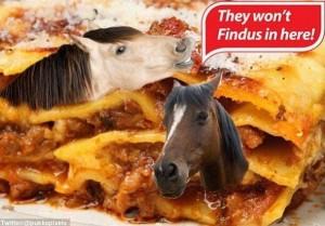 findus-cheval