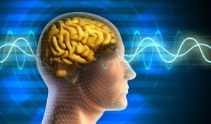 internet-cerveau
