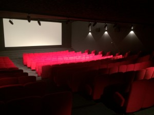salle-projection-cannes