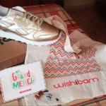 La start-up Wishibam développe ses assistants shopping en B2B
