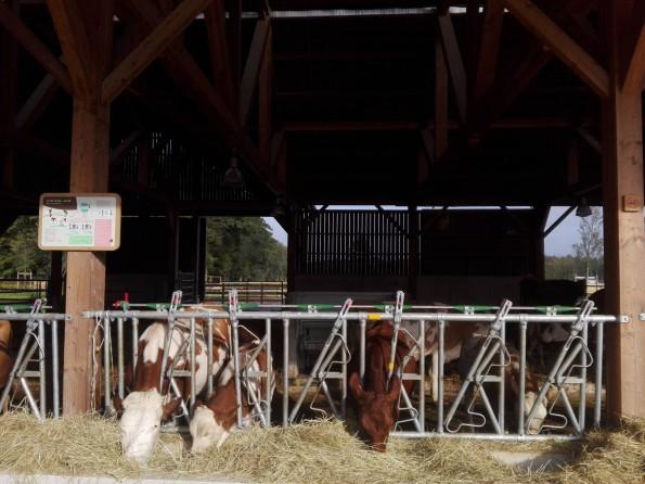 Au sein du corps de ferme reconstitué à l'entrée de Villages Nature Paris.