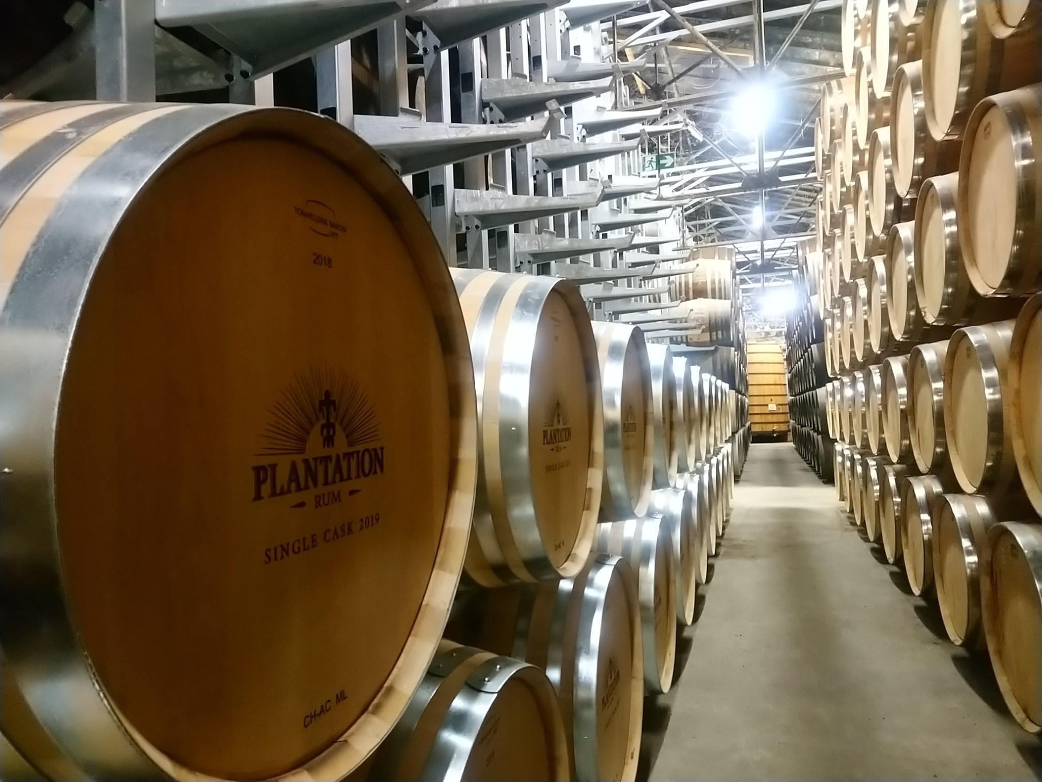 Chai Plantation - Maison Ferrand
