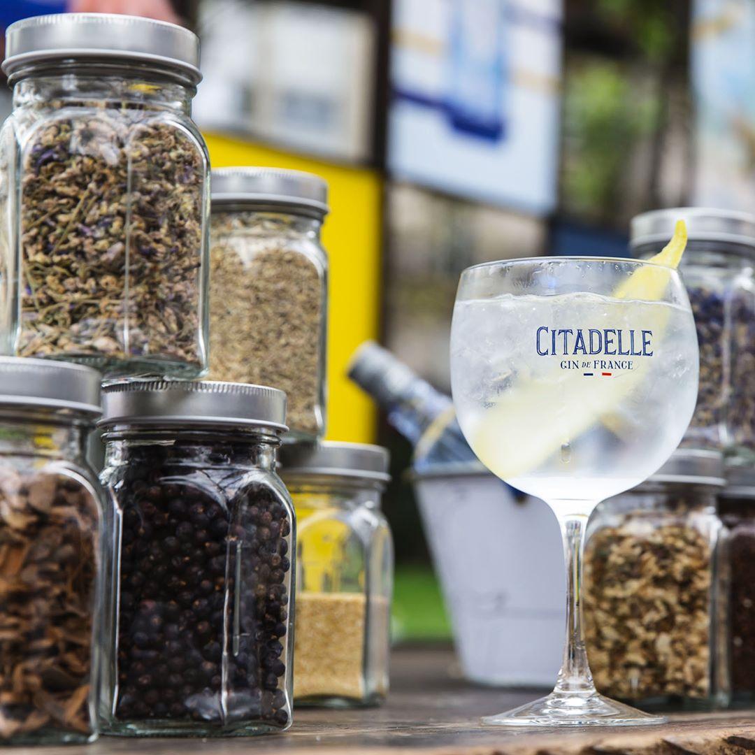 19 botanicals composent Citadelle Gin