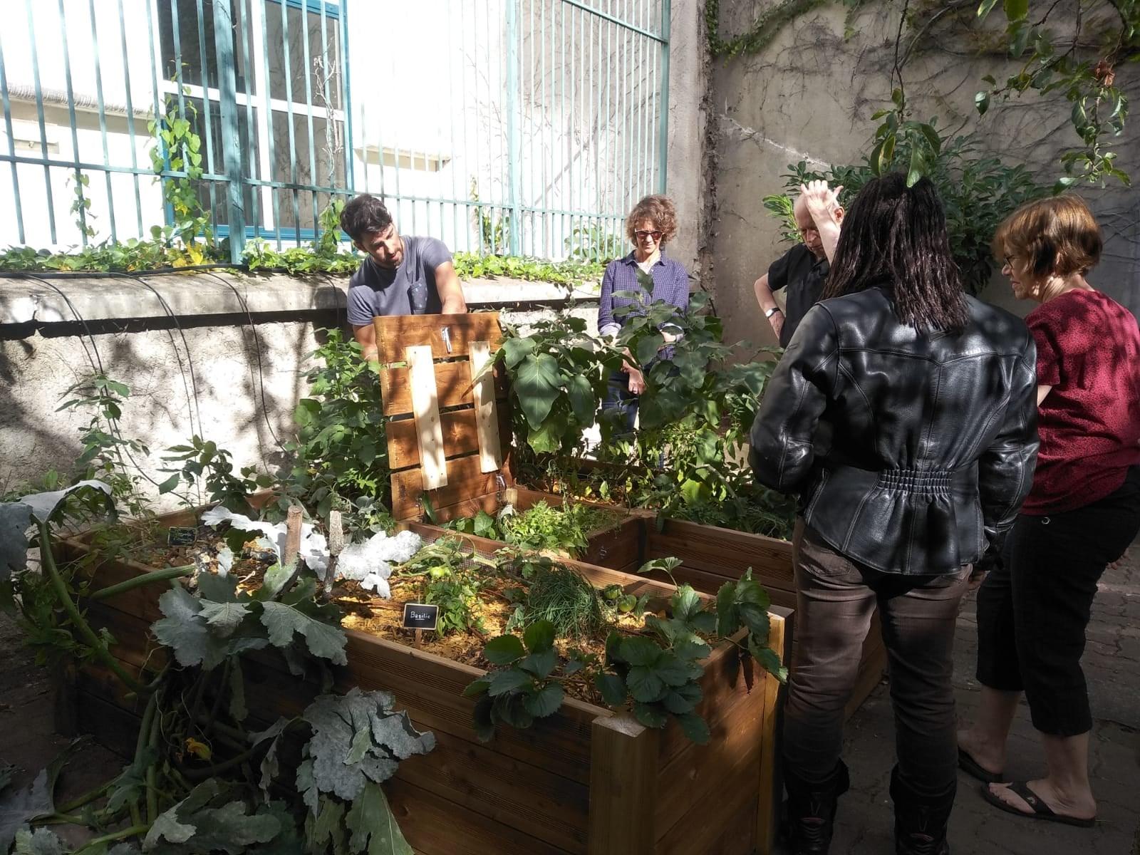 Merci Raymond - Végétalisation en milieux urbains