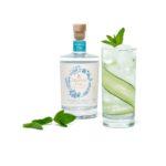 """Pourquoi Pernod Ricard mise sur """"les saveurs du gin"""" sans alcool de Ceder's"""