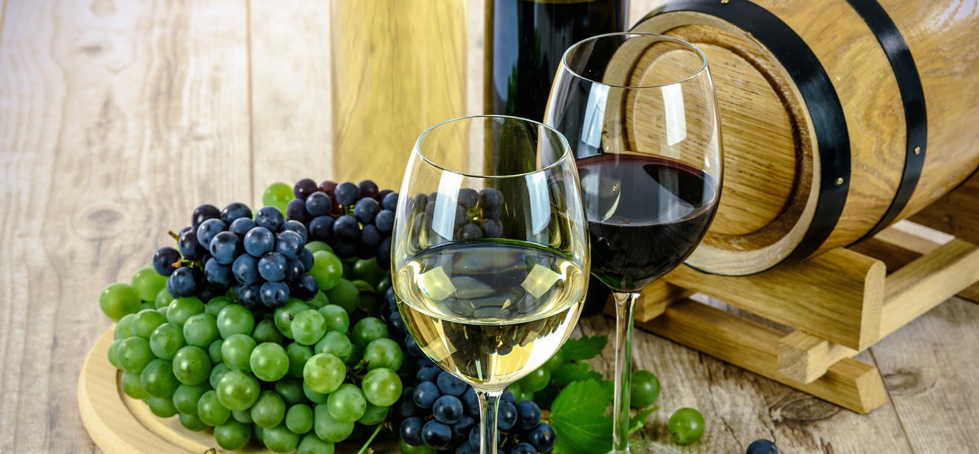 Dégustation de vins en barriques avec du raisin