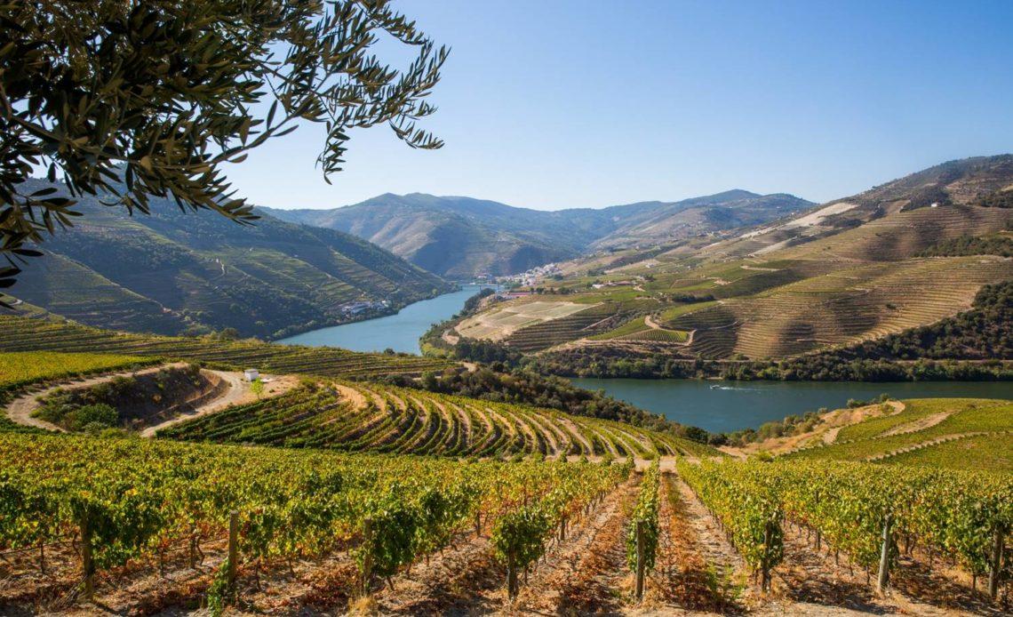 Cruz - Vallée du Douro (Portugal)